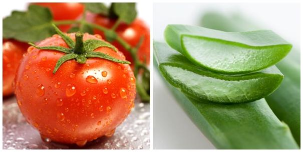 Bí quyết trị mụn từ thực phẩm hiệu quả dành cho bạn từ nha đam và cà chua