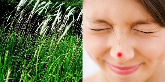 Tìm hiểu nguyên nhân & Bỏ túi 7 cách trị mụn mủ ở mũi hiệu quả 7