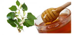 Tổng hợp cách trị mụn bằng rau diếp cá và lưu ý khi sử dụng